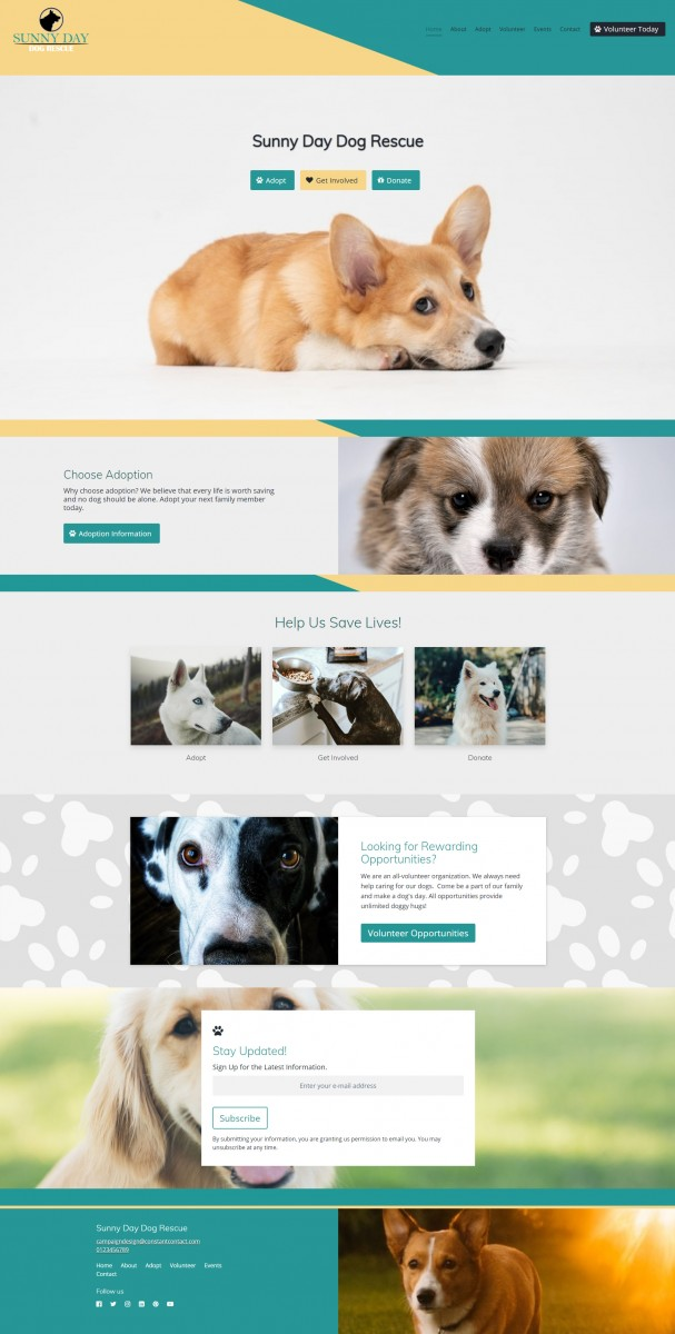 Sunny Day Dog Rescue Website Example