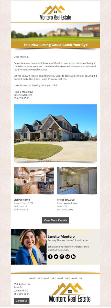 Real Estate Campaign Design Example - Montero Real Estate